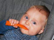 храни за бебета