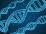 генетични заболявания