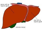 абсцес на черния дроб