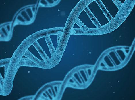 синдром на чупливата Х хромозома
