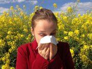 стичане на секрет от носа
