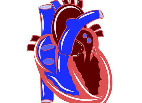 отворен артериален канал