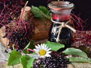 плодове от бъз