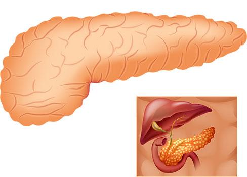 екзокринна панкреасна недостатъчност