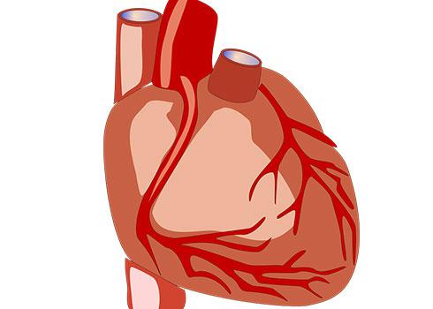 симптоми при инфаркт на миокарда