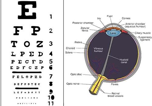 увреждане на очите при диабет