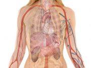 пулмонална хипертония