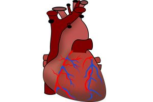 рестриктивна кардиомиопатия