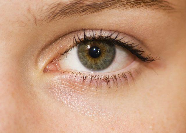 болести на лещата