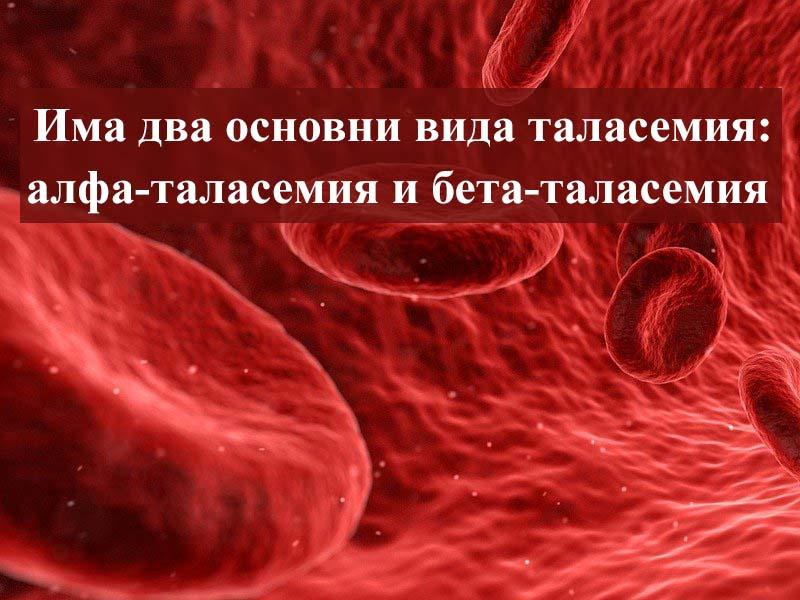 видове таласемия
