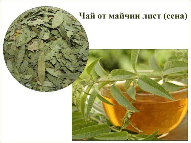 чай от майчин лист