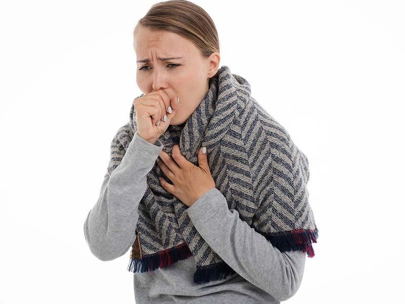 видове кашлица