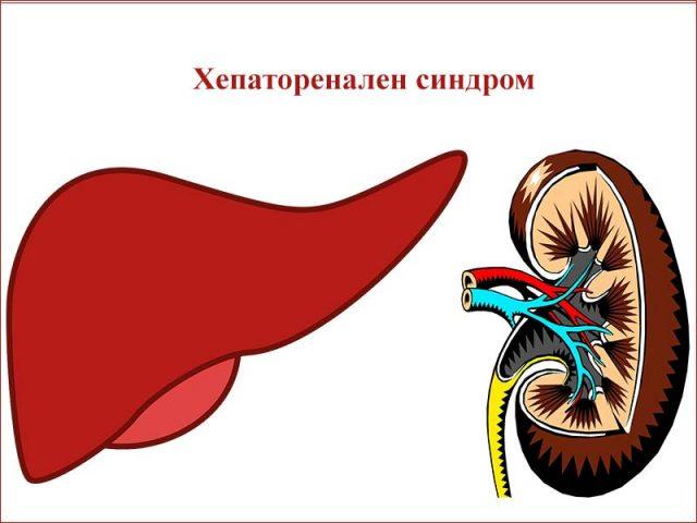 хепаторенален синдром