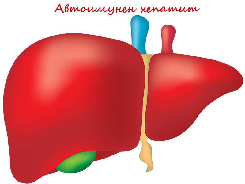 автоимунен хепатит