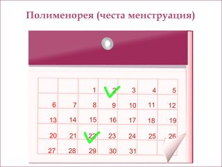 полименорея (честа менструация)
